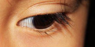 La vision y el niño. La importancia de la visión en el aprendizaje