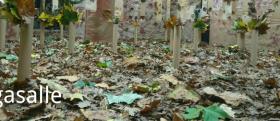 instalacion otoño